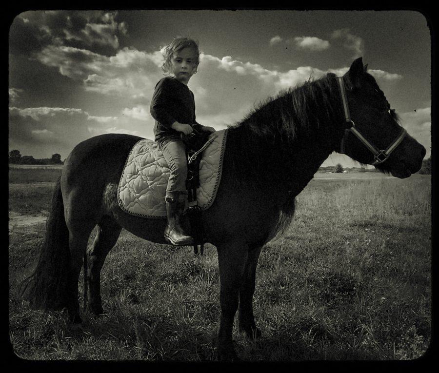 ALPHEN_GEORGE_HORSE_2021_1500